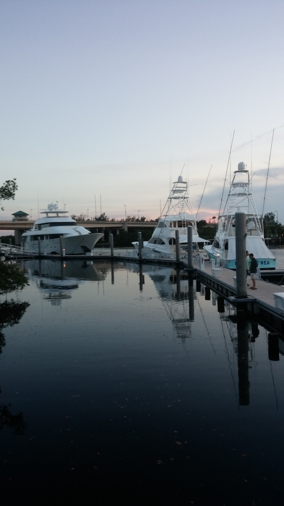 Boats docked at Harbourside Place.