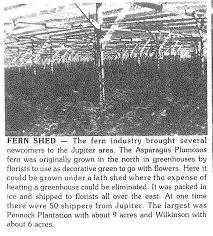 Pennock Fern Shed